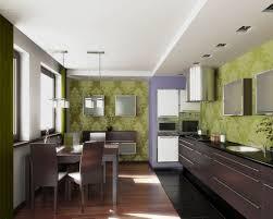Eat In Kitchen Ideas Contemporary Green Eat In Kitchen Designs U2014 All Home Design Ideas