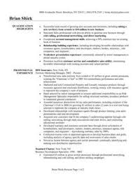 Consulting Resume Example Sample Technology Consultant Resume Cv     Wellness Consultant Sample Resume sample of commercial invoice Airline  Ticket Agent Sample Resume Simple Salary Slip
