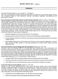 Examples Of Summaries On Resumes by Cio Technology Executive Resume Example Sample