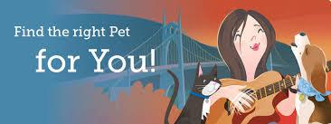 bluetick coonhound oregon adopt a pet oregon humane society