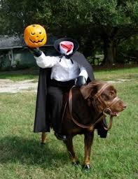 Dog Costumes Halloween 20 Dog Halloween Costumes Ideas Pet