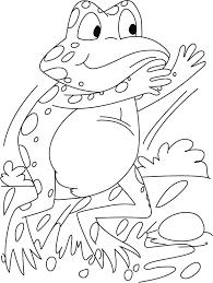 tadpole coloring page startling frog coloring pages download free startling frog
