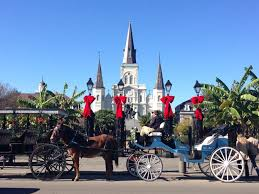 thanksgiving horse pictures things to do thanksgiving week experience new orleans