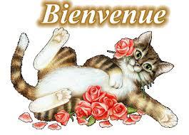 bonjour amis de la romance !!!!! Images?q=tbn:ANd9GcRkeYI6ACfrbvnalCJNx_w-isZwHnU3o1BGeZK3Fcxh3hSjYrL1mQ
