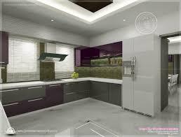kitchen interior design pictures in india