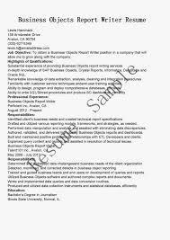 Resume Examples For Business Students   Resume Maker  Create     Perfect Resume Example Resume And Cover Letter