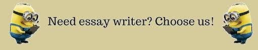Minion Essay Writers