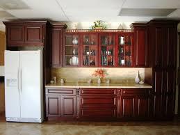 Kitchen Cabinet Decor Ideas by Superb Metal Kitchen Cabinet Doors Greenvirals Style
