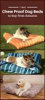 best chew proof dog bed to buy from amazon dog guide 4u