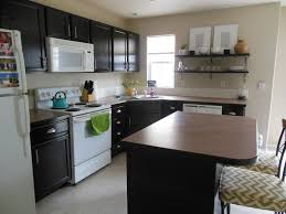 Dark Stained Kitchen Cabinets Furniture Paint Kitchen Cabinets With General Finishes Gel Stain