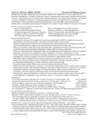 Management Consultant Resume Sample by 100 It Consultant Resume 8 The Early Childhood Workforce
