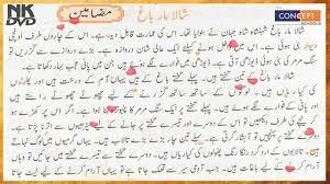 Essay  CSS      Paper    Jahangir s World Times