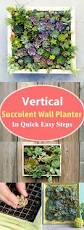 Vertical Garden Vegetables by Best 25 Wall Gardens Ideas On Pinterest Vertical Garden Wall