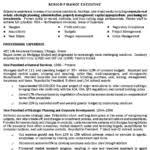 sales executive resume template premium resume samples         design com   Professional Resume Template Services