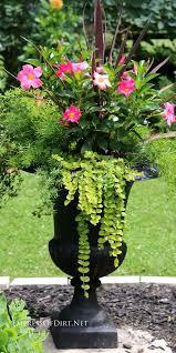 best 25 flower planters ideas on pinterest potted plants deck