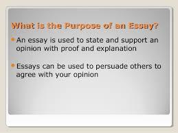 essay on compassion