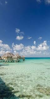 best 25 tikehau pearl beach resort ideas on pinterest dream