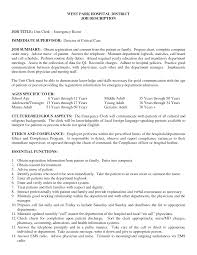 Car Sales Consultant Job Description Resume by Server Resume Example Server Cover Letter Example Sample Resume