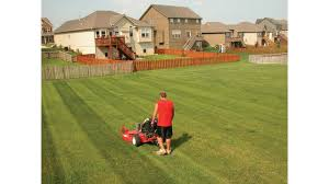 What Do Landscapers Do by Landscaping Business Growing Pains Planning Green Industry Pros
