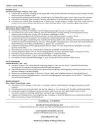 Director Of Operations Resume Sample by It Manager Resume It Manager Resume Sample U0026 Template Page 2 It