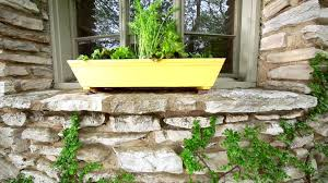grow a window box vegetable garden how tos diy