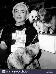 joan crawford us film actress reading the script for her film