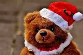 free images play sweet cute christmas brown bear red panda