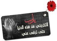 صباح الصباح والجاى احسن من الراح !!!!