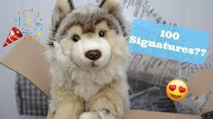 australian shepherd webkinz webkinz signature timber wolf unboxing youtube