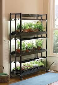 plant stand best plant shelves images on pinterest plants indoor