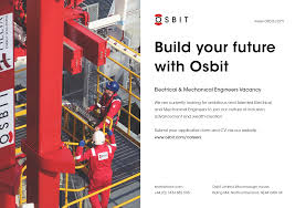 Cv Inclusion by Osbit Linkedin