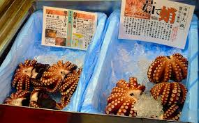 [Giới thiệu] Du hành chợ cá Tsukiji Images?q=tbn:ANd9GcRsD6FUhUGSx-iLijDglo-bD5E133_1R2jsdBk6VXr2gpGZwWqOug