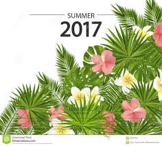 Flowers Plants by Trendy Summer Card Banner Poster With Tropical Flowers Plants
