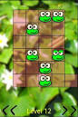 frog jumping at screen