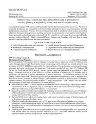 Consultant resume template Dynu Consultant Resume Template   Premium Resume Samples  amp  Example