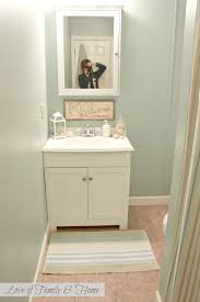 Paint For Bathroom Walls 4 Cheap Ideas For Updating Your Bathroom Walls Hort Decor