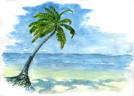 palmier daltonien lignes et couleurs