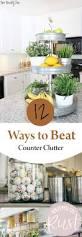 Kitchen Organization Ideas Pinterest Best 25 Clutter Free Home Ideas On Pinterest Clutter Control
