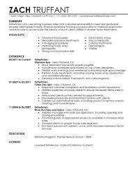 Customer Service Experience Resume Esthetician Resume Cover Letter Resume For Your Job Application