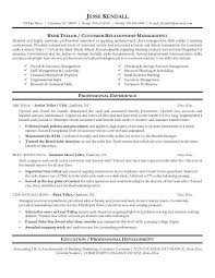 Banker Resume Example by Business Action Plan Template Img This Program Originally