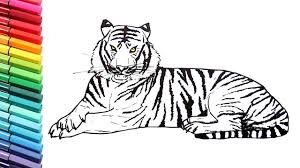 drawing and coloring a tiger how to draw wild animals color