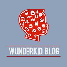 Kitchen Cabinet Logo How To Choose Ikea Kitchen Cabinet Wunderkid Blog