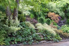Rock Garden Plants Uk by Contemporary Plants Archives Garden Trends