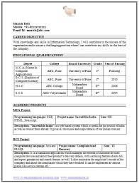 Job Resume  MCA Resume Format For Freshers Template Resume For IT Professional Fresher  Free