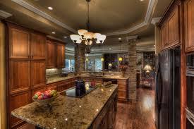 Interior Kitchen Decoration Interior Fantastic Kitchen Design With Best Quartz Countertops Vs