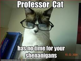 professor cat. reply