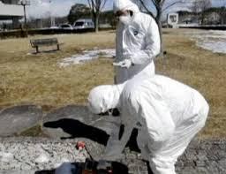 centrali nucleari danni