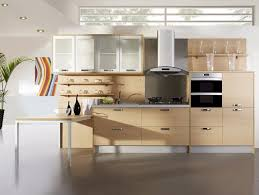 Ready Made Kitchen Cabinets by New Home Kitchen Designs Ready Made Built In Cupboards Built