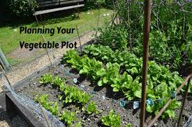 Planning A Raised Bed Vegetable Garden by Planning Your Vegetable Plot Kidsinthegarden