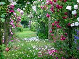 Jardins de Persefone Images?q=tbn:ANd9GcRwooBYFdrKG0pl6XerjFwYWOfUFX8EEnPKoc0-IQxSJPOQOiZa